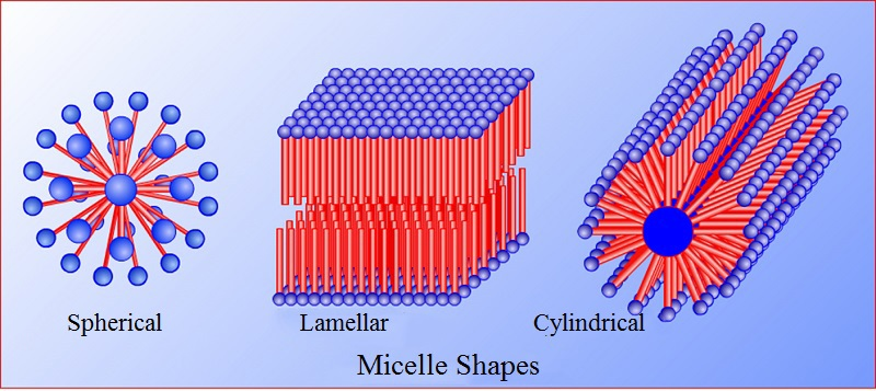 micelle shapes