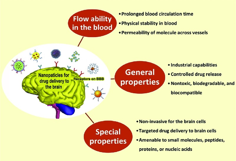 Ideal-characteristics-of-NPs-for-drug-delivery-to-the-brain